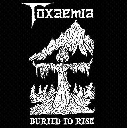 Toxaemia - Buried to Rise: 1990-1991 Discography