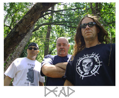 Dead - Photo