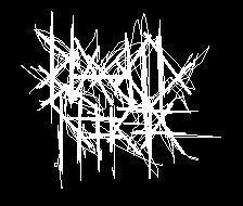 Blackid Nocta - Logo