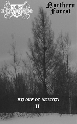 Heirdrain / Northern Forest - Melody of Winter II