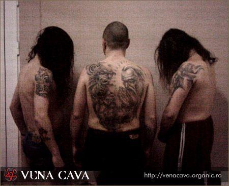 Vena Cava - Photo
