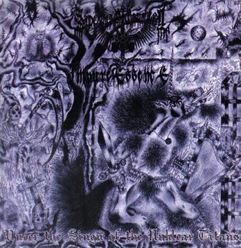 Impure Essence / Sadomaso Control - Under the Sign of the Nuklear Titans