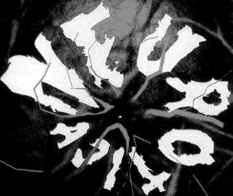 Neurotica - Logo