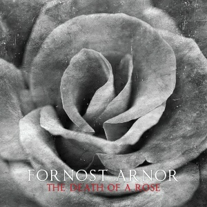 Fornost Arnor - The Death of a Rose