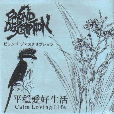 Beyond Description - Calm Loving Life