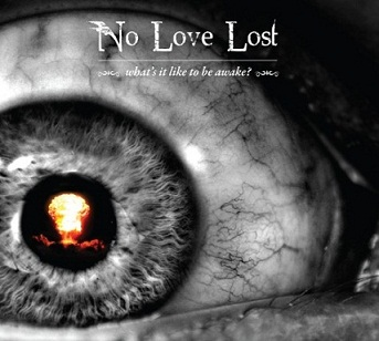 No Love Lost - What's It like to Be Awake?