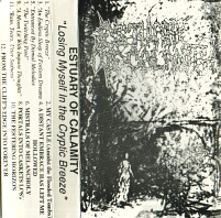 Estuary of Calamity - Losing Myself in the Cryptic Breeze