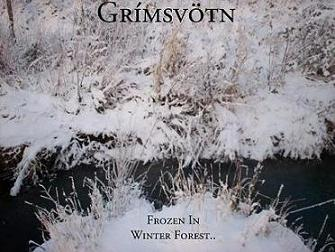 Grímsvötn - Frozen in Winter Forest..