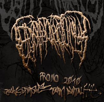 Epicardiectomy - Promo 2010