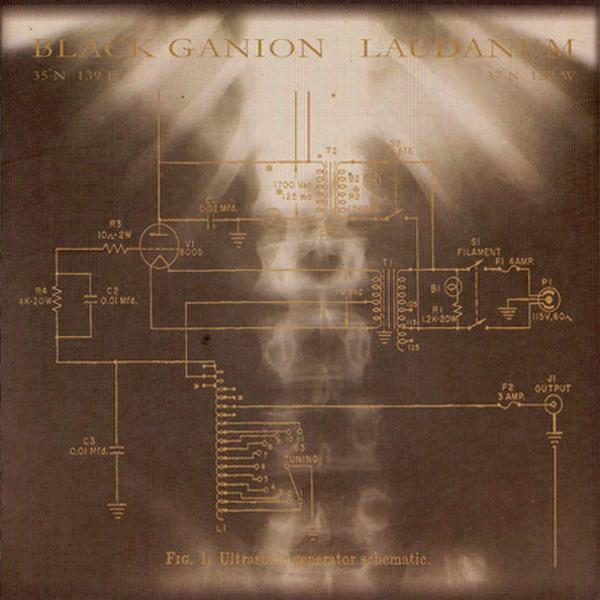 Laudanum - Ultrasonic Generator Schematic