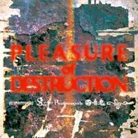 Blood Stain Child / Serpent / Vagerke - Pleasure of Destruction