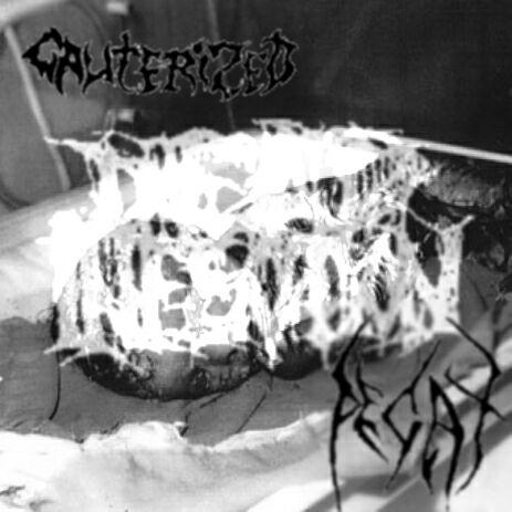 Decay / Cauterized - Dead Infection Tribute