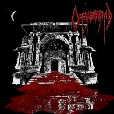 Offallectomy - Slaughterhouse