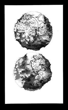 Earthenwomb - Vol. I