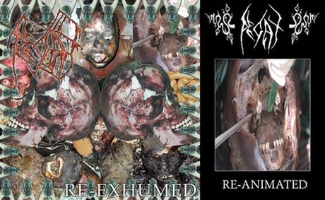 Decay - Re-Exhumed & Re-Animated