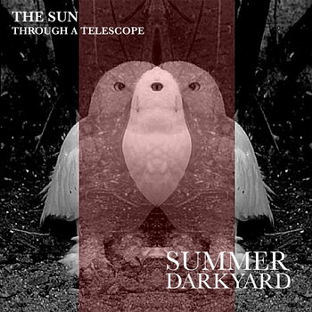The Sun Through a Telescope - Summer Darkyard
