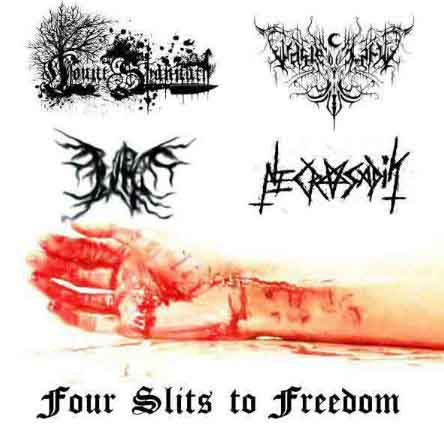 Waste of Life / Count Shannäth / Pain Is a Narcotic - Four Slits to Freedom