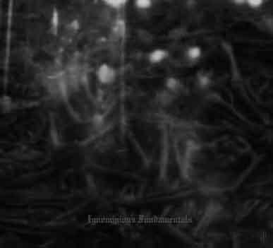 Dark Opus - Ignominious Fundamentals