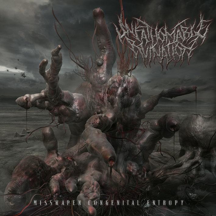 Unfathomable Ruination - Misshapen Congenital Entropy