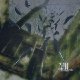 VII-Sense - Black Bird