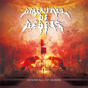 Downfall of Debris - Downfall of Debris