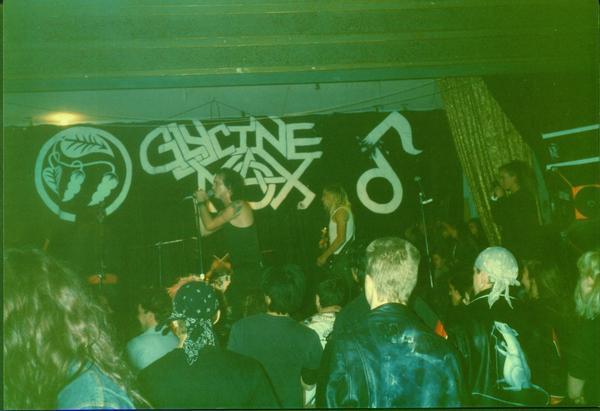 Glycine Max - Photo