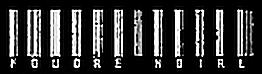 Foudre Noire - Logo