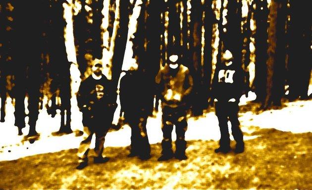 Ironweed - Photo