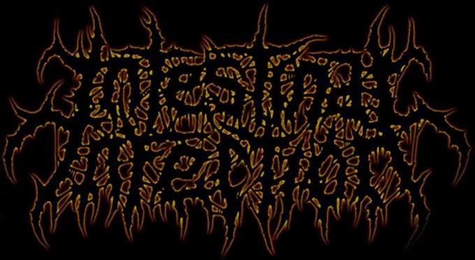 Intestinal Infection - Logo