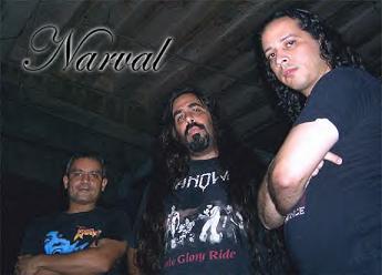 Narval - Photo