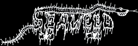 Seaweed - Logo