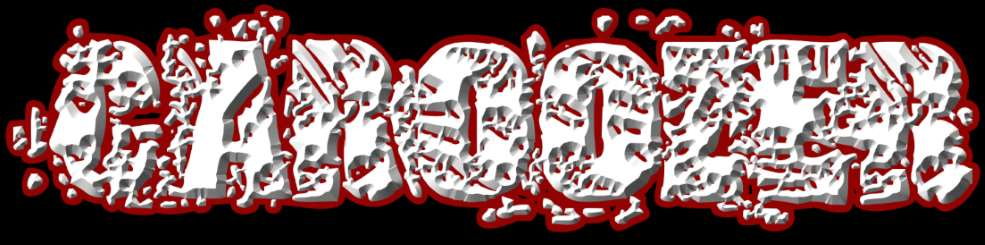 Caroozer - Logo