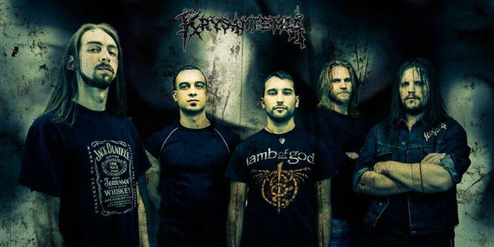 Krysantemia - Photo
