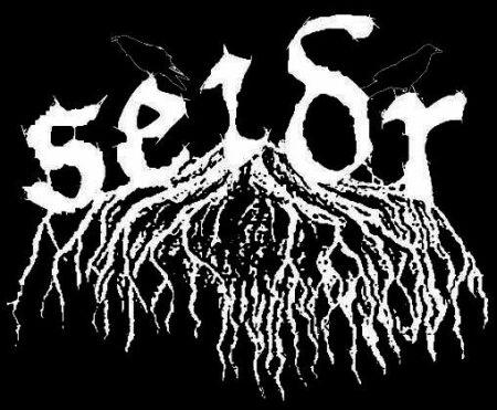 Seidr - Logo