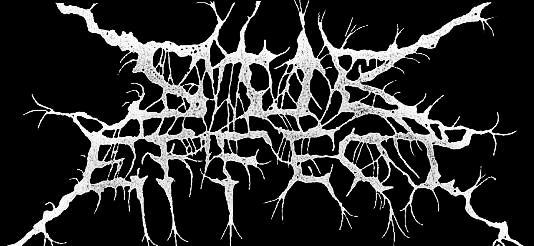 Sub-Effect - Logo