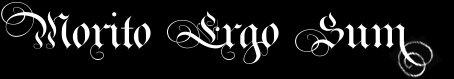Morito Ergo Sum - Logo