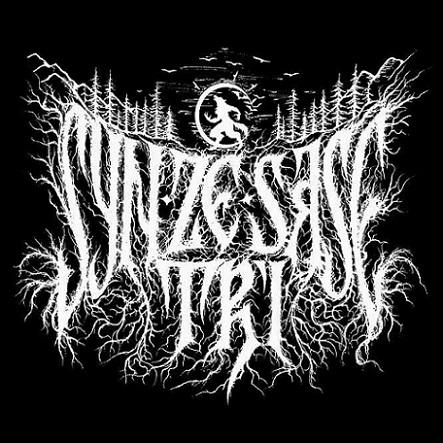 Syn Ze Șase Tri - Logo