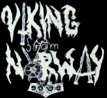 Viking from Norway - Logo
