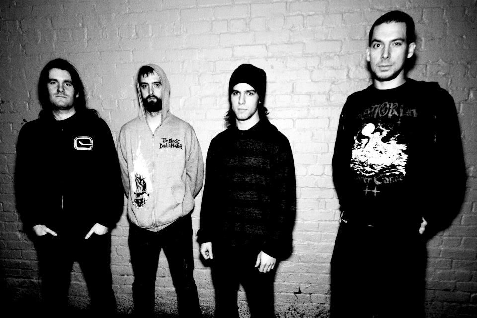 Harvest the Infection - Photo