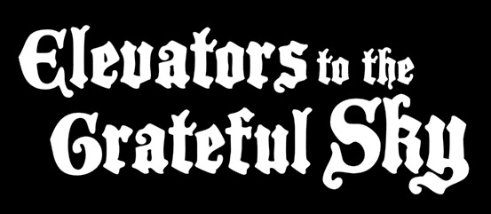 Elevators to the Grateful Sky - Logo