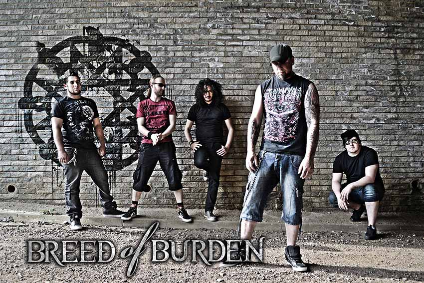 Breed of Burden - Photo
