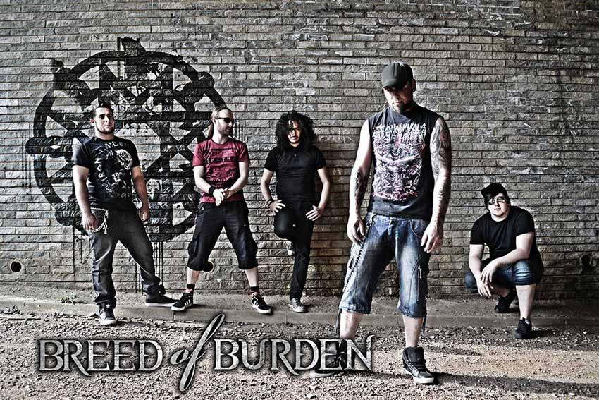 Breed of Burden - Photo