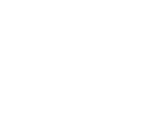 Delusions of Insanity - Logo
