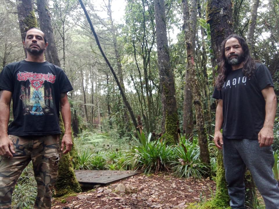 Bacteremia - Photo