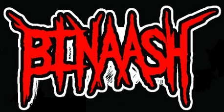 Binaash - Logo