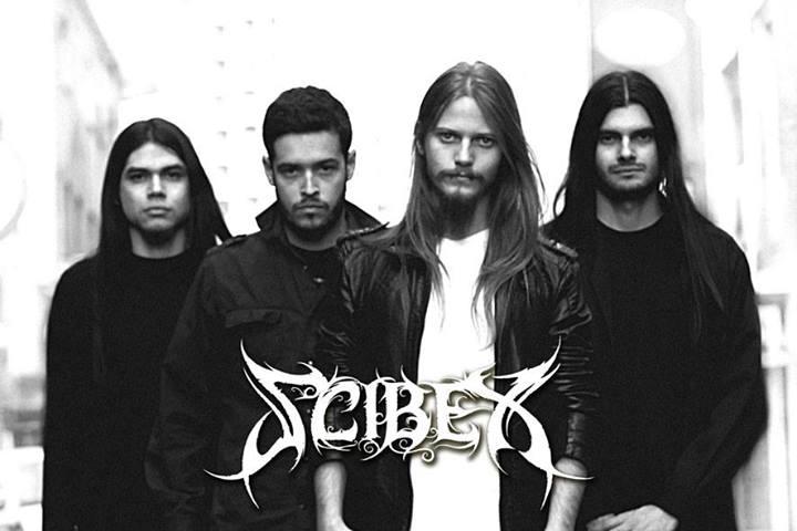 Scibex - Photo