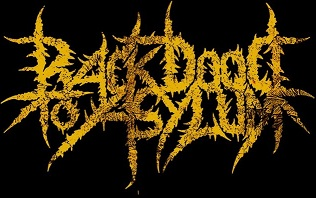 Back Door to Asylum - Logo