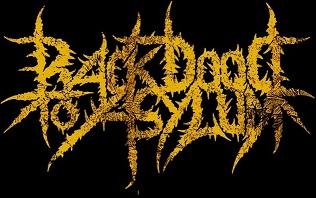 Back Door to Asylum - Logo