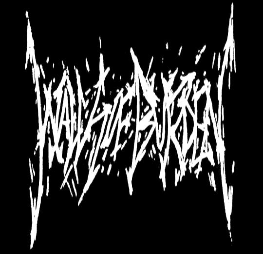 Walls of Burden - Logo