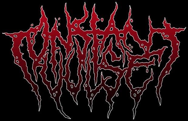 Constant Vulse - Logo